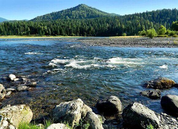 река бия 5